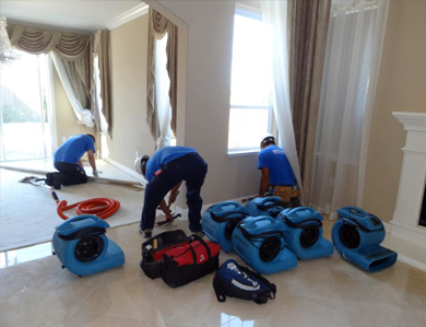 Water Damage Restoration Toronto