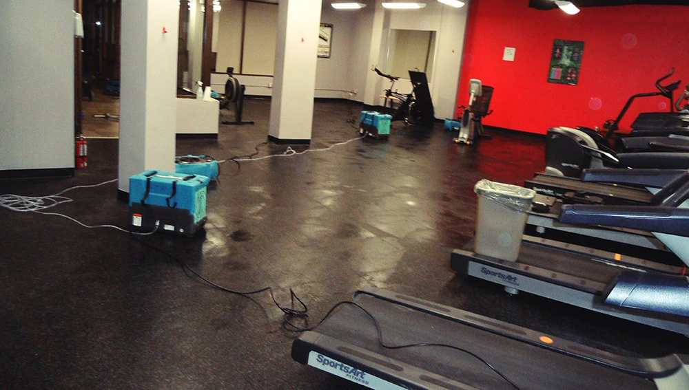 Water damage restoration repair toronto GTA after